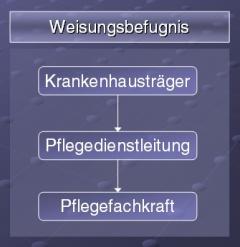Abbildung 2: Weisungsbefugnis